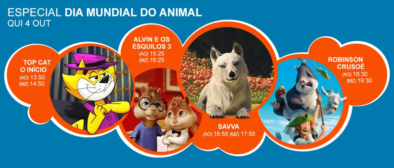 PIPOCA_HEADER_SITE_Especial-Dia-Mundial-do-Animal-min